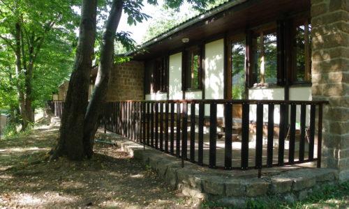 camping du lac Châlets et terrasses (5)